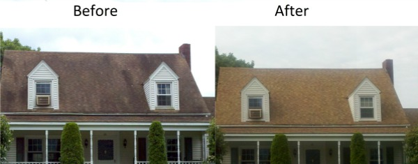 Roof Cleaning Binghamton NY PRESSURE WASHING SERVICES – Can You Pressure Wash A Shingle Roof